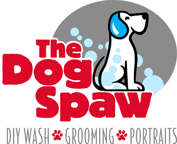 The dog spaw grooming do it yourself dog wash the dog spaw solutioingenieria Gallery
